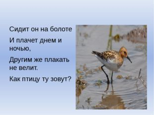 Сидит он на болоте И плачет днем и ночью, Другим же плакать не велит. Как пт