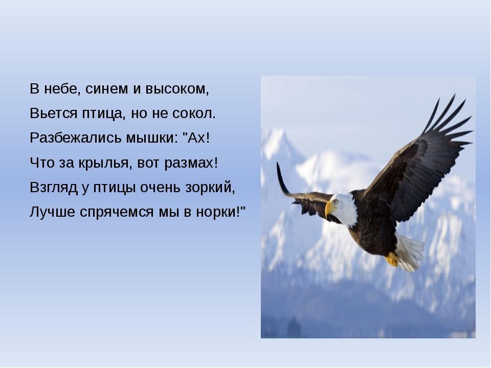 """В небе, синем и высоком, Вьется птица, но не сокол. Разбежались мышки: """"Ах!..."""