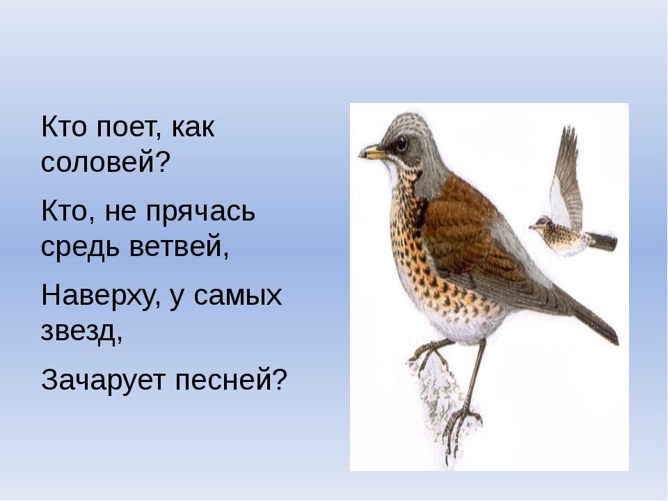 Кто поет, как соловей? Кто, не прячась средь ветвей, Наверху, у самых звезд,...