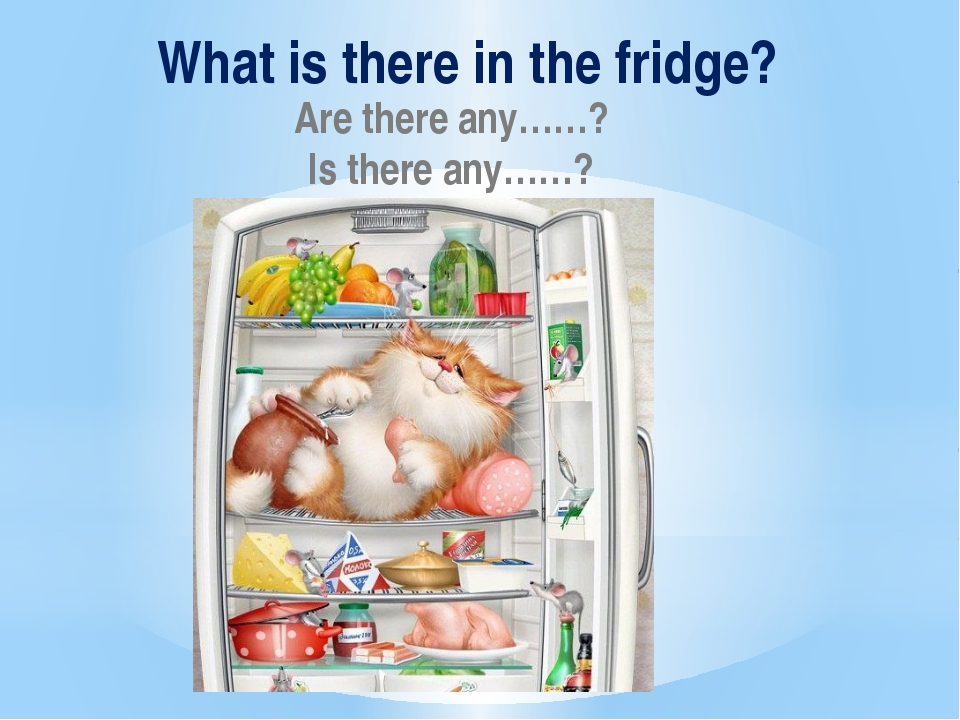 What is there in the fridge? Are there any……? Is there any……?