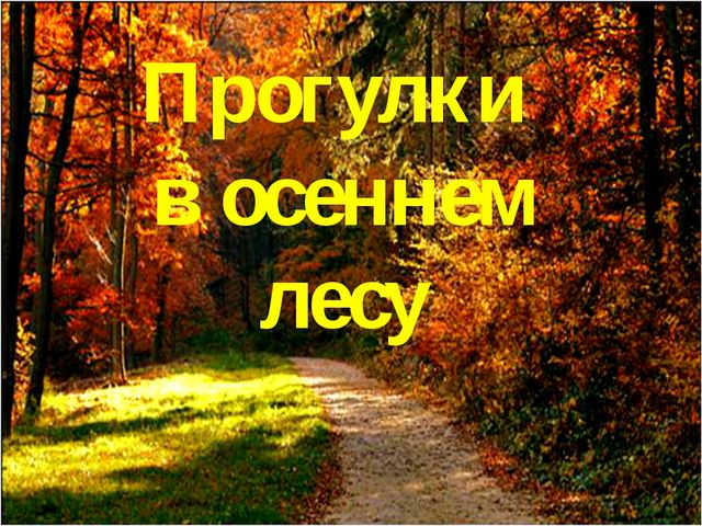 Прогулки в осеннем лесу