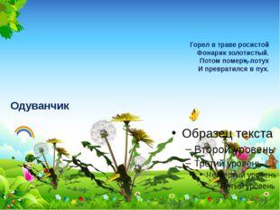 Горел в траве росистой Фонарик золотистый. Потом померк, потух И превратился