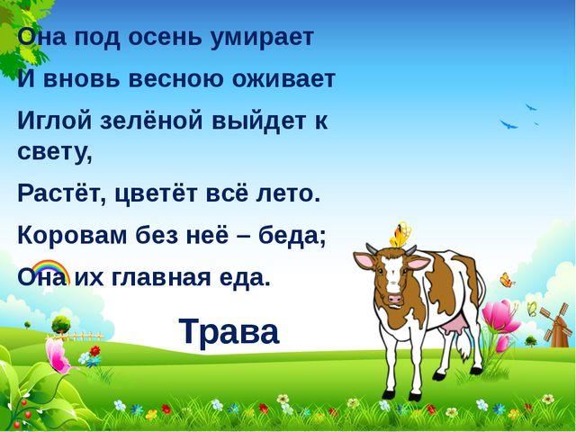 Трава Она под осень умирает И вновь весною оживает Иглой зелёной выйдет к све...