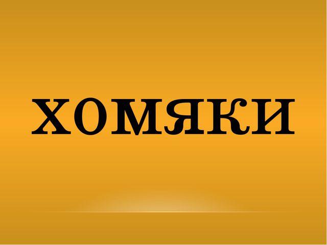 хомяки