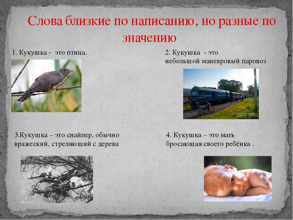 Слова близкие по написанию, но разные по значению 1. Кукушка - это птица. 2...