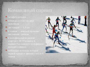 Командный спринт эстафета команд команда состоит из двух лыжников дистанция