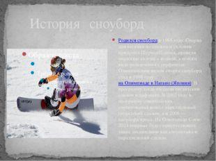 История сноуборд Родился сноубордв 1965 году. Снаряд для катания по снежным