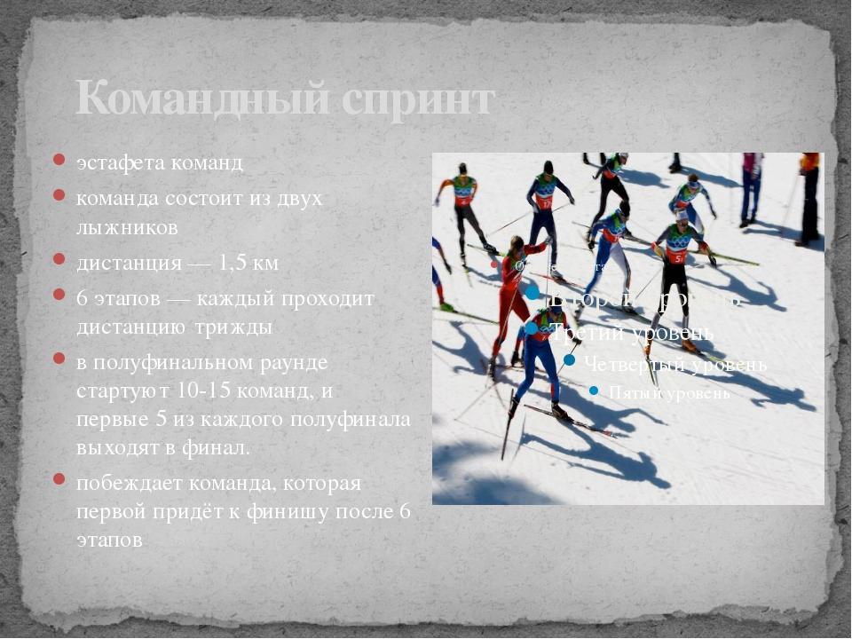 Командный спринт эстафета команд команда состоит из двух лыжников дистанция...
