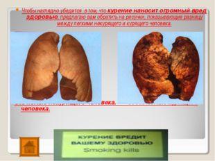 Чтобы наглядно убедится в том, что курение наносит огромный вред здоровью, пр