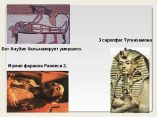 Бог Анубис бальзамирует умершего. Мумия фараона Рамзеса 2. 3 саркофаг Тутанха