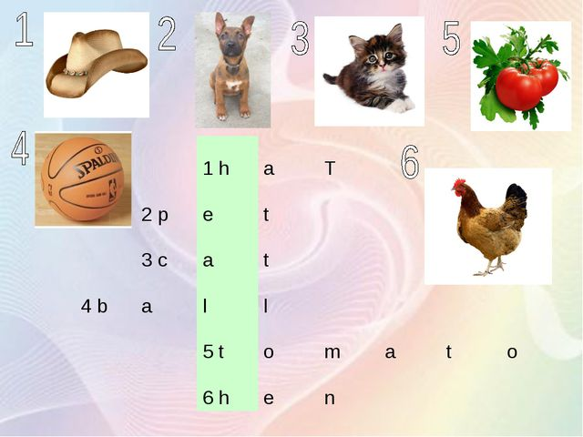 1 haT 2 pet 3 cat 4 ball 5 tomato 6 he...
