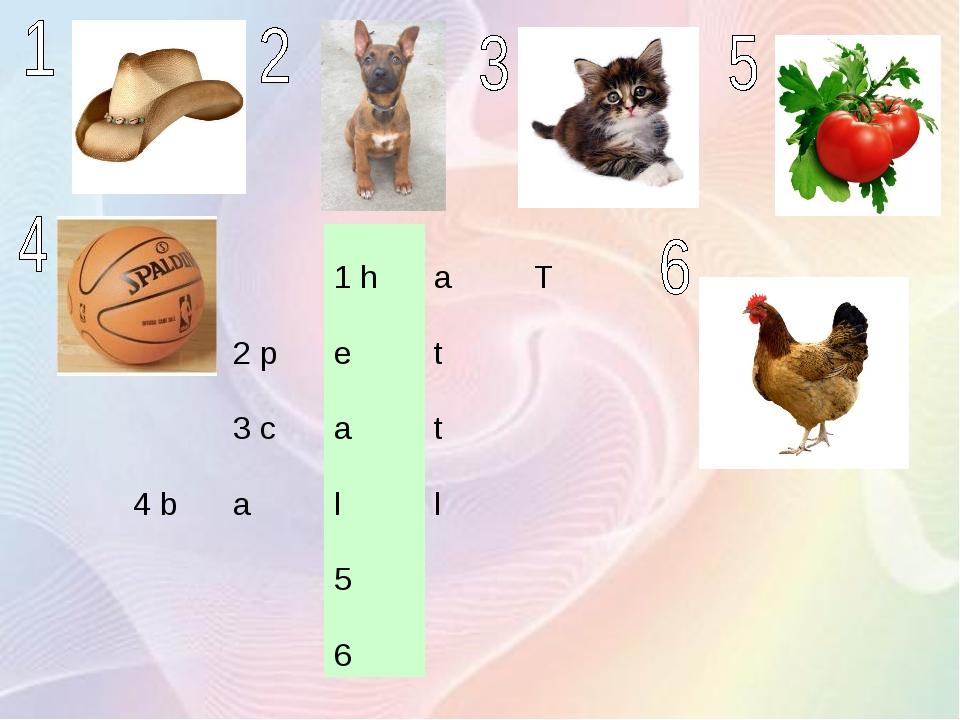 1 haT 2 pet 3 cat 4 ball 5 6
