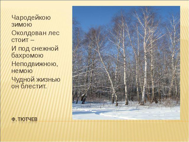 Чародейкою зимою Околдован лес стоит – И под снежной бахромою Неподвижною, не...