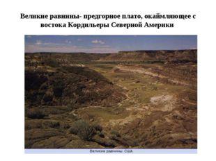 Великие равнины- предгорное плато, окаймляющее с востока Кордильеры Северной