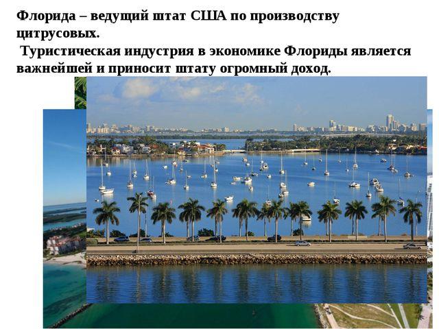 Флорида – ведущий штат США по производству цитрусовых. Туристическая индустри...