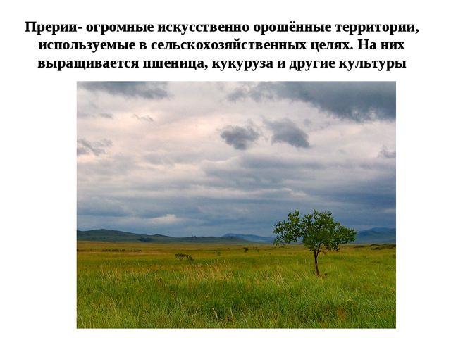 Прерии- огромные искусственно орошённые территории, используемые в сельскохоз...