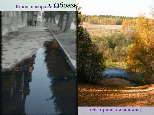 Какое изображение тебе нравится больше?