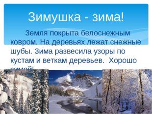 Земля покрыта белоснежным ковром. На деревьях лежат снежные шубы. Зима разве