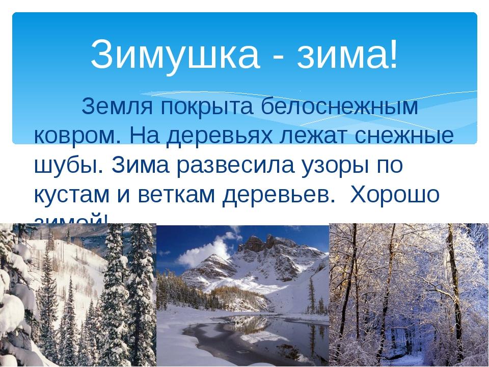 Земля покрыта белоснежным ковром. На деревьях лежат снежные шубы. Зима разве...