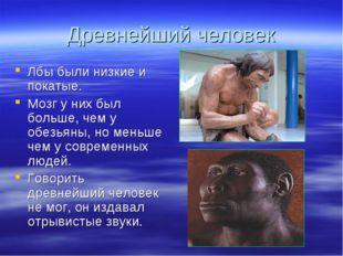 Древнейший человек Лбы были низкие и покатые. Мозг у них был больше, чем у об