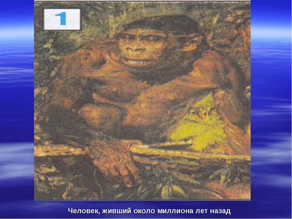 Человек, живший около миллиона лет назад