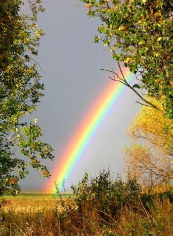http://www.symbolsbook.ru/images/R/Rainbow.jpg