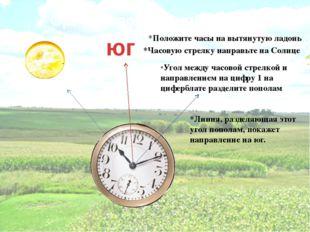 Ориентирование по часам юг *Положите часы на вытянутую ладонь *Часовую стрелк