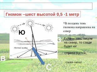 Ориентирование с помощью гномона Гномон –шест высотой 0,5 -1 метр *В полдень