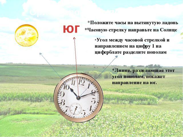 Ориентирование по часам юг *Положите часы на вытянутую ладонь *Часовую стрелк...