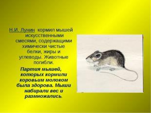 Н.И. Лунин кормил мышей искусственными смесями, содержащими химически чистые