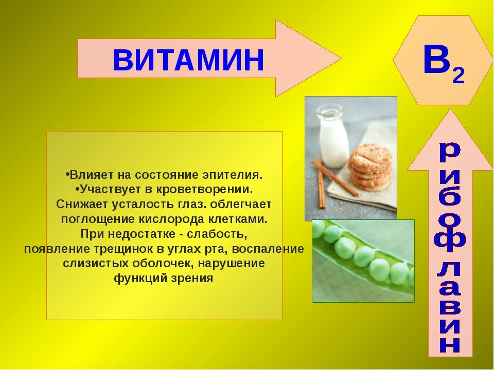 ВИТАМИН B2 Влияет на состояние эпителия. Участвует в кроветворении. Снижает у...