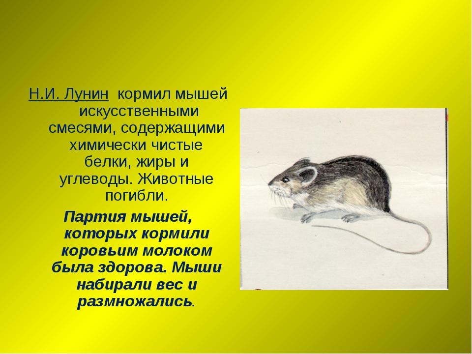 Н.И. Лунин кормил мышей искусственными смесями, содержащими химически чистые...