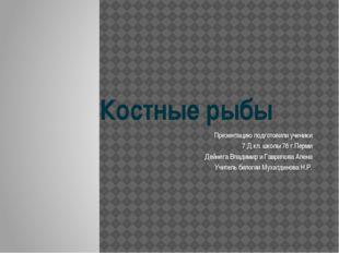 Костные рыбы Презентацию подготовили ученики 7 Д кл. школы 76 г.Перми Дейнега