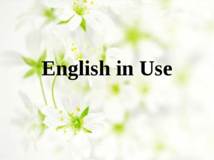 English in Use