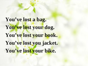 You've lost a bag. You've lost your dog. You've lost your book. You've lost y