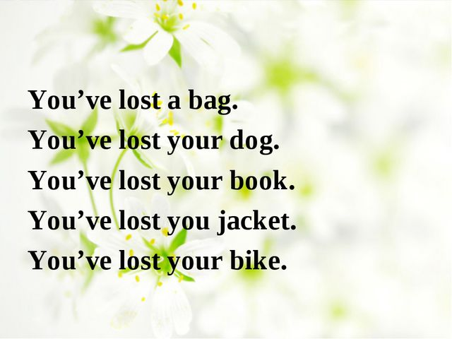 You've lost a bag. You've lost your dog. You've lost your book. You've lost y...