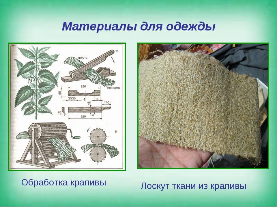 Материалы для одежды Обработка крапивы Лоскут ткани из крапивы