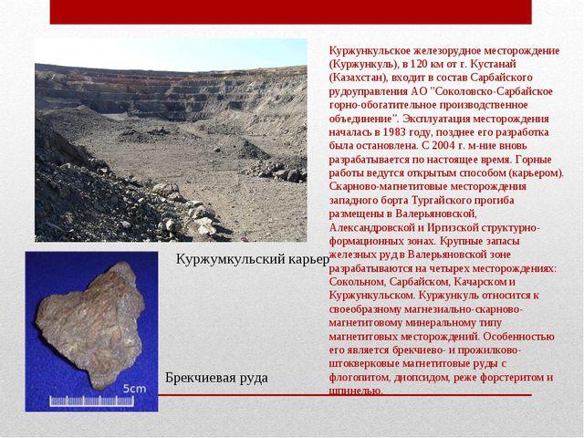 Куржункульское железорудное месторождение (Куржункуль), в 120 км от г. Кустан...