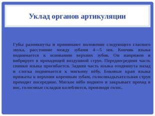 Уклад органов артикуляции Губы разомкнуты и принимают положение следующего гл