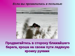 Если вы провалились в полынью Продвигайтесь в сторону ближайшего берега, крош