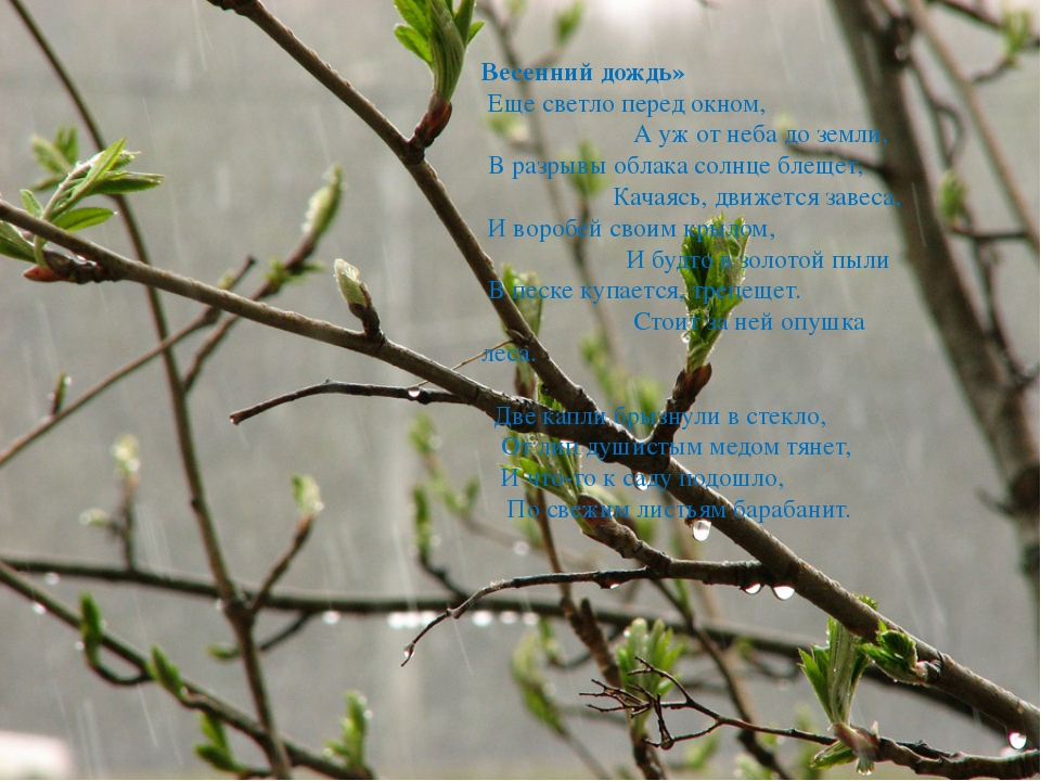 Весенний дождь» Еще светло перед окном, А уж от неба до земли, В разрывы обла...