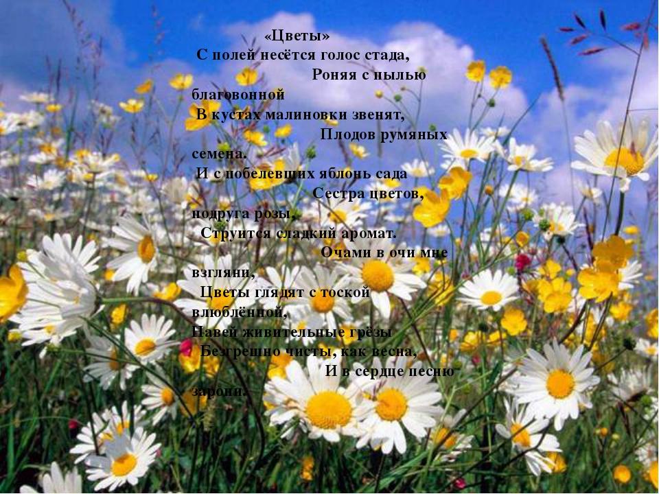 «Цветы» С полей несётся голос стада, Роняя с пылью благовонной В кустах мали...
