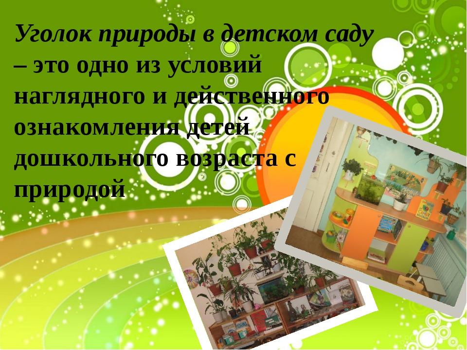Уголок природы в детском саду – это одно из условий наглядного и действенного...