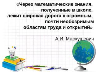 «Через математические знания, полученные в школе, лежит широкая дорога к огро