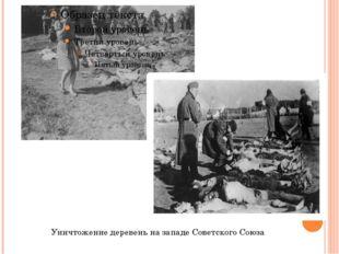 Уничтожение деревень на западе Советского Союза