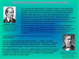 История создания клеточной теории Шлейден (Schleiden) Маттиас Якоб (05.04.180