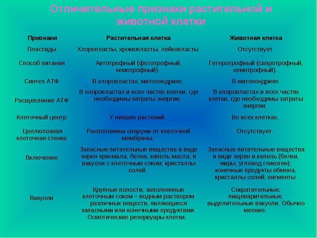 Отличительные признаки растительной и животной клетки ПризнакиРастительная к...