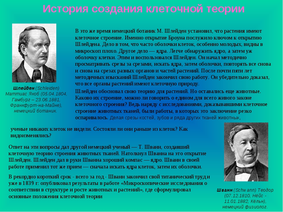 История создания клеточной теории Шлейден (Schleiden) Маттиас Якоб (05.04.180...