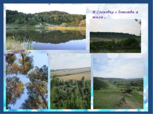 В Сосновке с детства я жила , Сосновка родина моя!