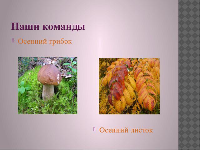 Наши команды Осенний грибок Осенний листок